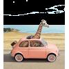 Summer Vibes - Animals -