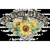 Sunflower - イラスト -