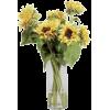 Sunflowers - Plants -