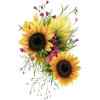 Sunflowers and floral Design - 自然 -