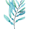 Teal - Items -