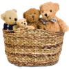 Teddys - Items -