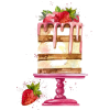 Cake - Illustrazioni -