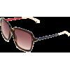 Tommy Hilfiger Women's TH1089S Butterfly Sunglasses Dark Havana Frame/Gray Gradient Lens - Sunglasses - $75.14