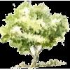 Tree - 自然 -