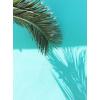 Tropical Background - Tła -