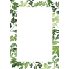 Tropical Leaves Frame - Marcos -