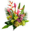 Tropical flowers - Plantas -