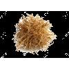 Tumbleweed - Plants -