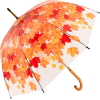 Umbrella - Реквизиты -
