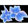 cvijet - Plantas -