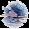 leptiri - Illustrazioni -
