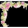 cvijece - Plants -