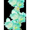 cvijetovi - 植物 -