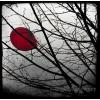 crveni balon - 插图 -