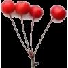 Viburnum red - Plants -