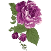 Vintage purple flower - Illustraciones -