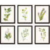 Watercolor Herbs Print Set Etsy - Arredamento -