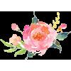 Watercolor Rose - Plantas -