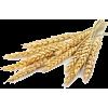 Wheat - Nature -