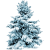 Winter Tree - Pflanzen -