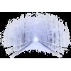Winter - Zwierzęta -