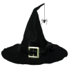 Witch hat - Items -