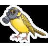 Yellow Bird - Illustrations -