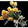 Yellow. Green - Plants -