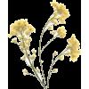 Yellow wildflower stems - Plants -