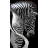 Zebra - Objectos -