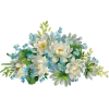 квіти - Plants -