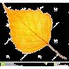 осінні листя - Natura -
