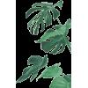 *** - Plants -