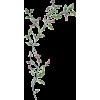 вапро - Plantas -