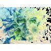 Face - Illustrations -
