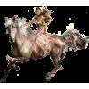 konjo - People -