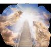 Holy - Illustrations -
