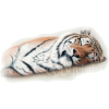 tigar - Animals -