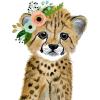 animal - Animals -