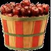 apples - Alimentações -