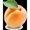 apricot - Fruit -
