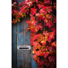 autumn - Fondo -