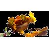 autumn - Ostalo -