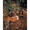 autumn bike photo - Uncategorized -