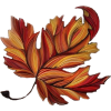 autumn leaf - Illustrations -