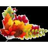 autumn leaves - Rastline -