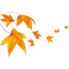 autumn leaves illustration - Illustrations -