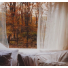autumn window - Здания -