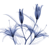 baa8fd3893b1ff95 - Uncategorized -